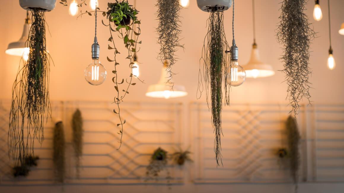 lámparas-gallery