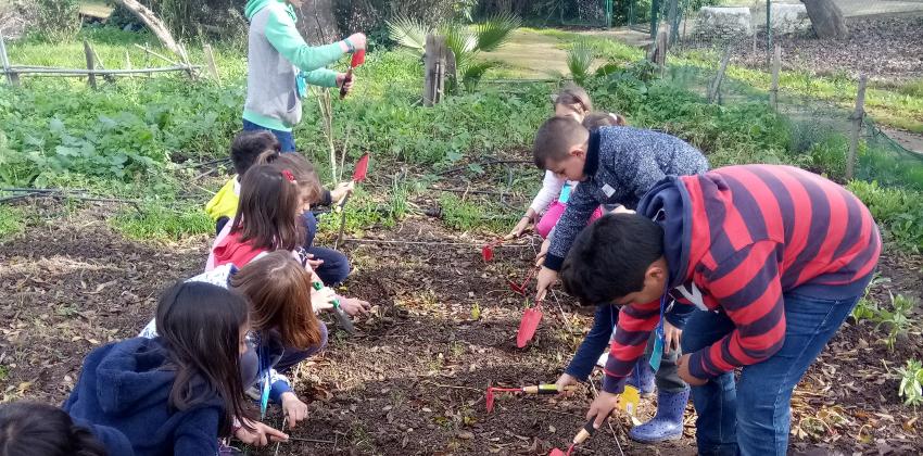 Sevilla: Campamento de verano gratuito en los Huertos Urbanos de Sevilla (7-12 años del 01 al 15/07)