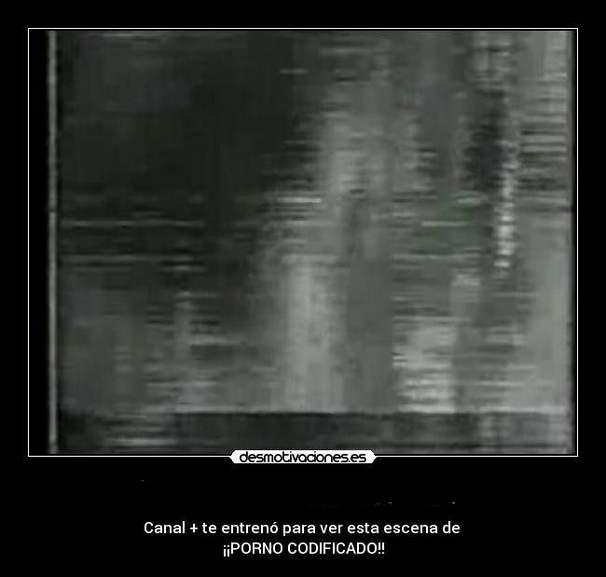 628338_1.jpg