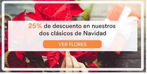 25% de descuento en flores clásicas de Navidad + 5€ de descuento en la primera compra