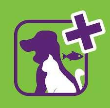 Atención veterinaria GRATUITA perros y gatos de desempleados por COVID-19 Madrid