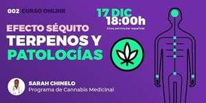 Curso Usos Médicos del Cannabis Gratis