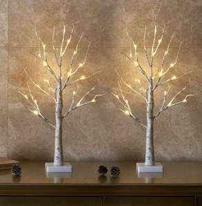 Juego de 2 Árboles de Luz LED 60cm