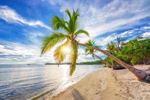 CholloLoco a PuntaCana ( Muchas fechas) en resort de lujo 4* +Todo Incluido+ Vuelos+ Seguro y traslados por solo 700€ (9 días) (PxPm2)