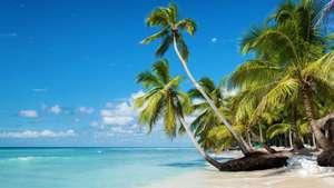 Locurote a Bayahibe y La Romana +Resort de lujo de 4*+Vuelos+ Todo Incluido+ Seguros y traslados +Regalos por solo 795€ (9 días) (PxPm2)