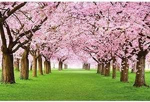 Poster de calidad 140 X 100 Cm, Sakura, 2 medidas más disponibles también al 50%,más regalo poster New York.
