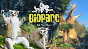 CholloLocoFamilias Alojamiento 3* + Entradas al Bioparc de Fuengirola + Cancela Gratis solo 27€ (PxPm4)
