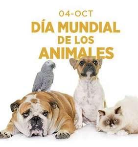 20% HU PETS - Día Mundial de los Animales