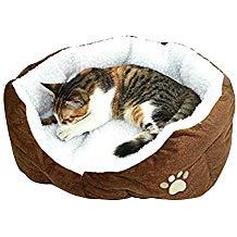 Cama de gato gratis - Pedido mínimo de 64€