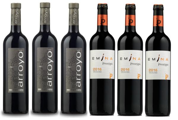 Pack 6 vinos D.O. Rivera Duero solo 40€ (nuevos usuarios en Vinoseleccion)