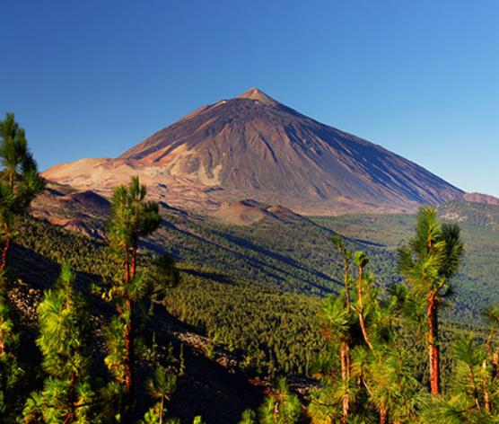 Vuelos a Tenerife desde 31€