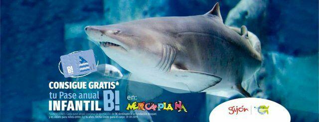 Consigue Gratis un pase anual gratuito para el acuario de Gijon si vas a su stand de Mercaplana
