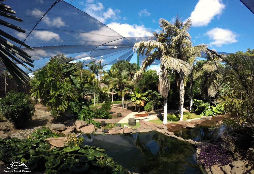 Palmetum Visitas guiadas gratuitas al Jardin Botánico de Santa Cruz De Tenerife