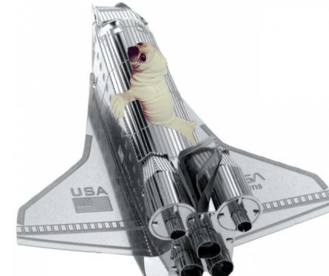 Puzzle 3D Transbordador espacial de la Nasa