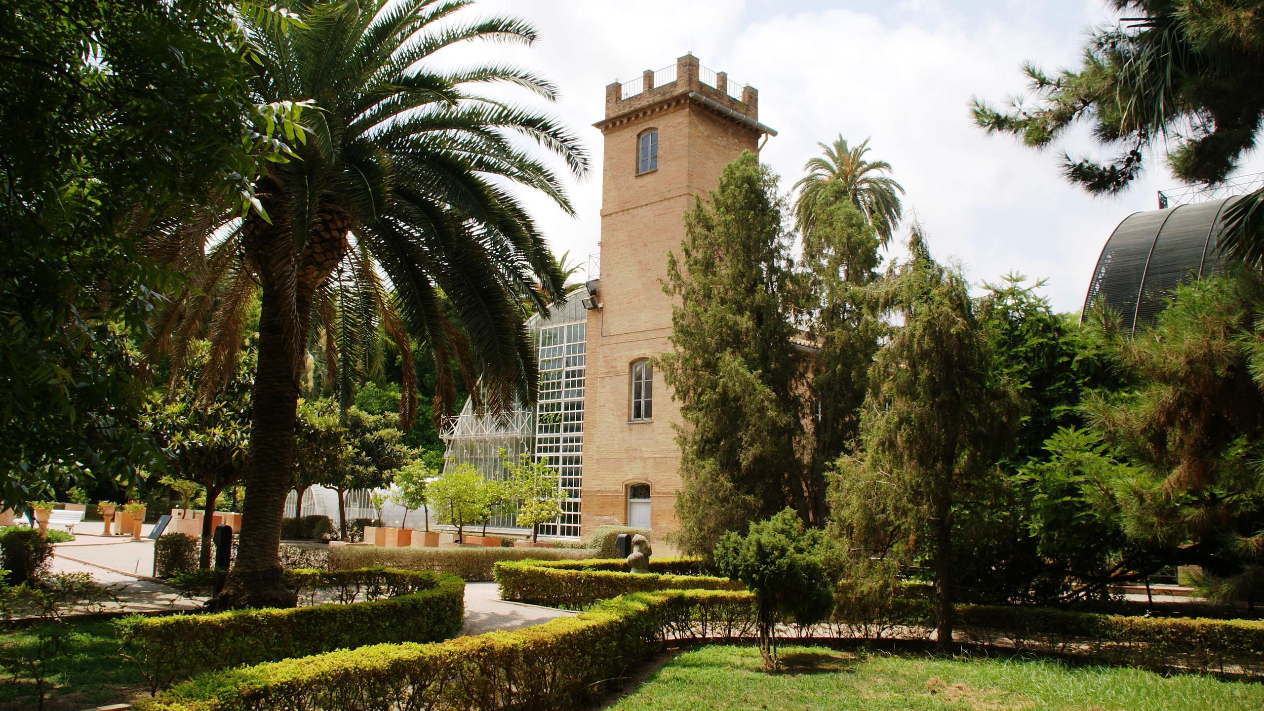 Entrada gratuita jardín Botánico Valencia día del árbol