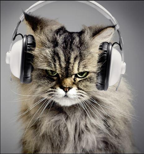 ¡Mamá! Soy Vago, y no quiero leer....quiero escuchar