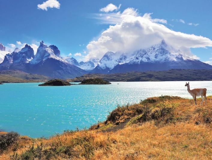 Vuelo directo (ida y vuelta) a Chile desde BCN