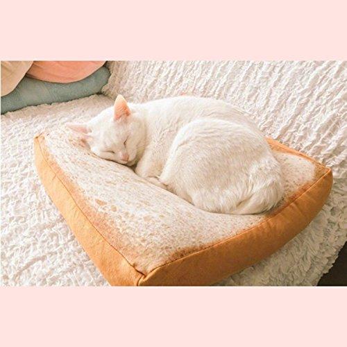 ¡Cama rebanada de Pan para mascotas por sólo 5,99€!
