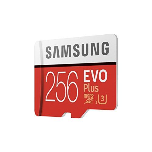 Samsung EVO Plus - Tarjeta de Memoria microSD de 256 GB con Adaptador