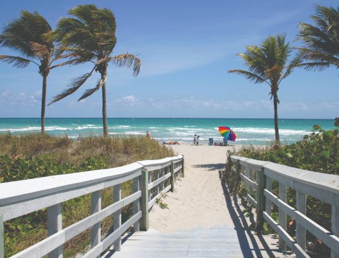 Vuelos directos a Florida desde 150€ trayecto