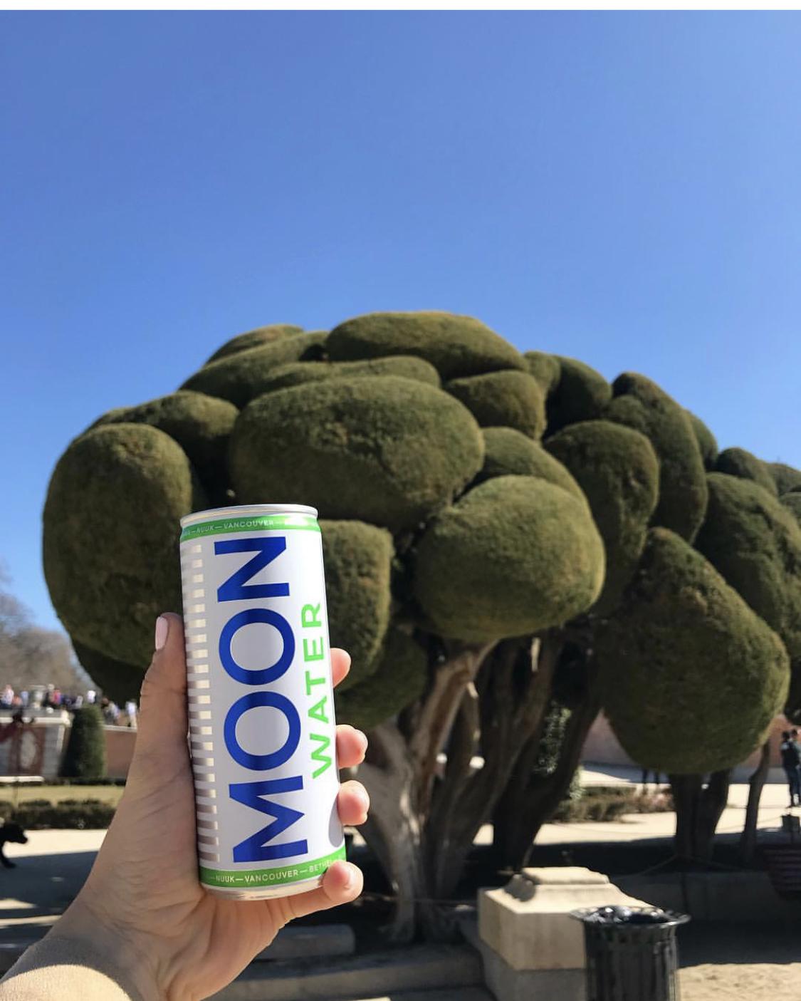 Descuento en pack 24 latas Moon Water