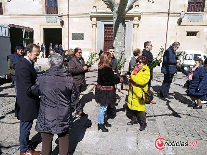 2000 encinas gratis para los zamoranos en la Plaza Viriato
