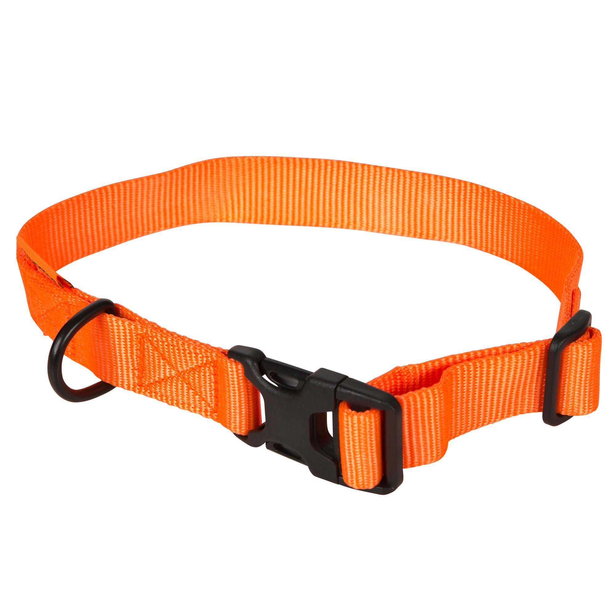 Collar para perro naranja fluor