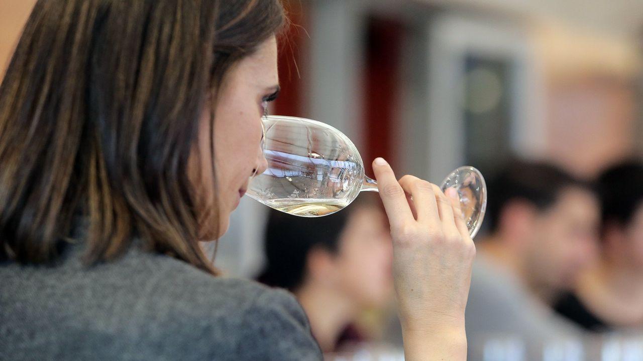Pontevedra (Cambados): Catas gratuitas en el Museo do Viño del 16 al 21 de abril