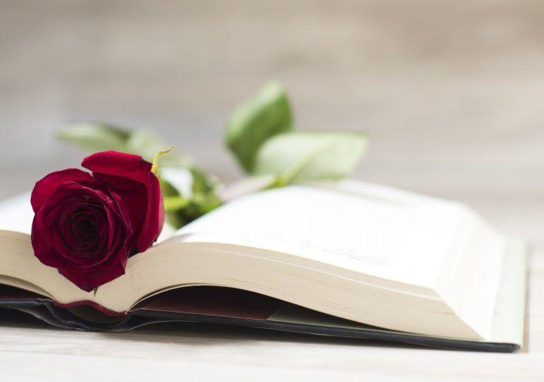 -10% Descuento en libros con motivo de Sant Jordi