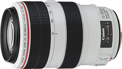 Canon EF70-300 f/4-5.6LIS USM