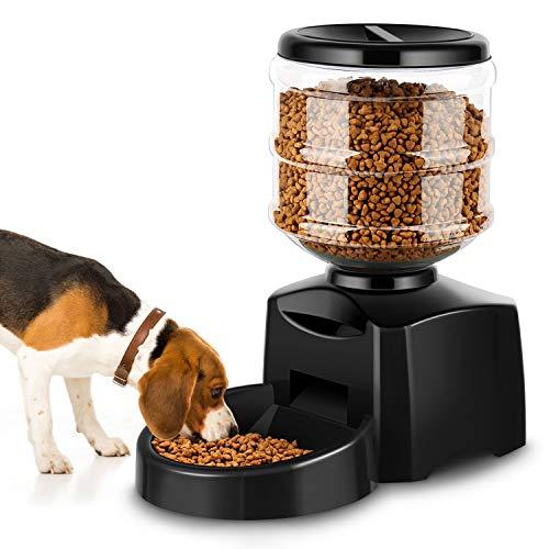 Comedero Automático Gatos y Perros 5.5L