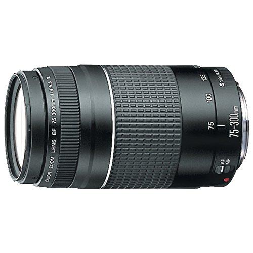 Canon 75-300 mm f/4-5.6 III - Objetivo para Canon (zoom óptico 4x,diámetro: 58mm) color negro