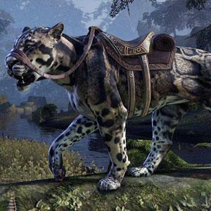 Consigue Montura gratis por ver en Twitch The Elder Scrolls Online y Legend (E3)