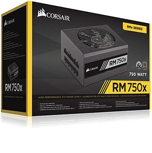 Corsair RM750x - Fuente de alimentación (Totalmente Modular, 80 Plus Gold, 750 W, EU) Negro