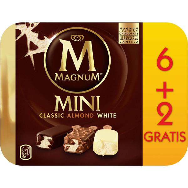 Surtido de helados Magnum a 0,25 la unidad!!!!!