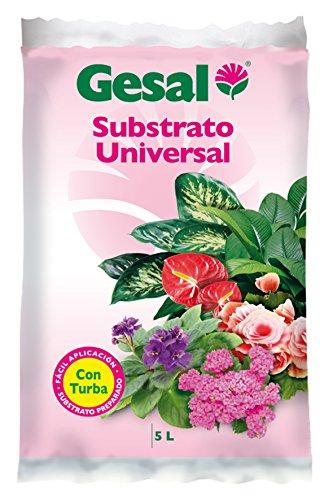 Substrato Universal 5L 34x6x21 cm