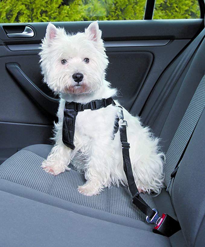 Arnés Trixie con cinturón de seguridad para perro talla S (ver descripción para talla L)