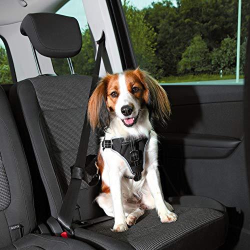 Trixie Arnés Seguridad Dog Protect, M, 50-65cm