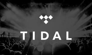 6 meses (medio año) gratis de Tidal