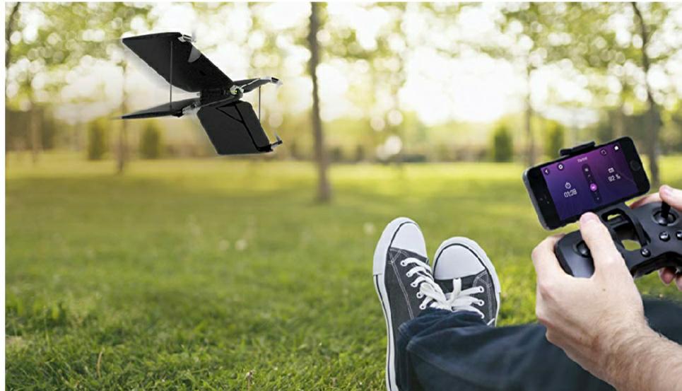 Dron Parrot