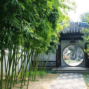 China 9 días con visitas, vuelos y hoteles 5*