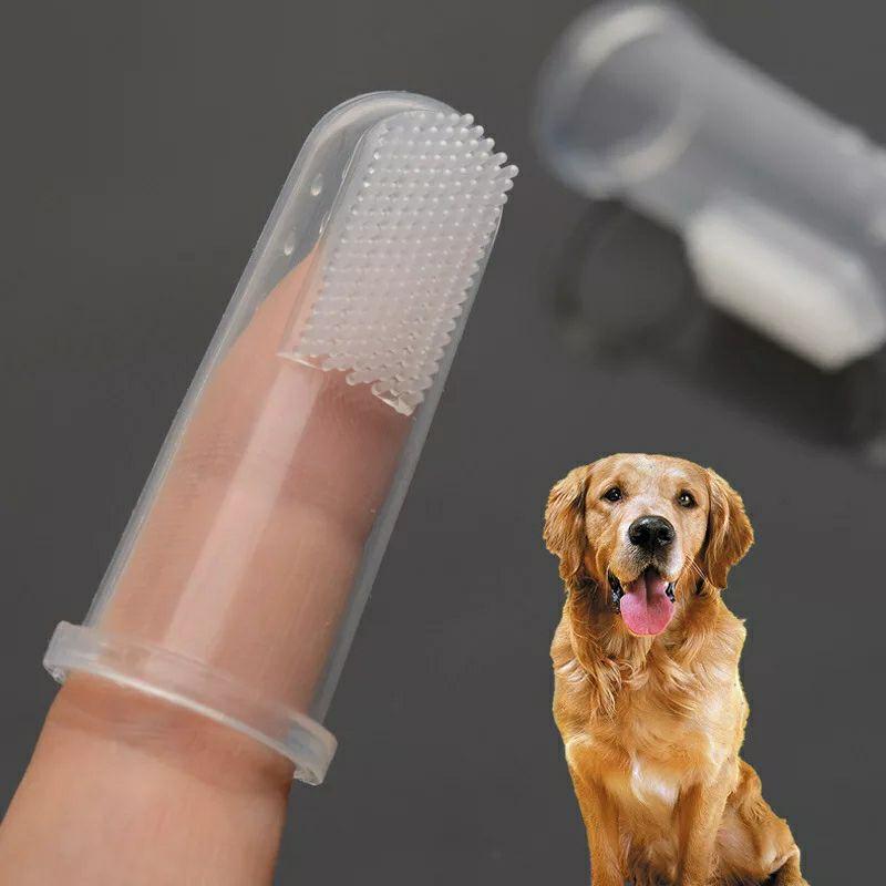 Cepillo de dientes de dedo para mascota a precio Diógenico