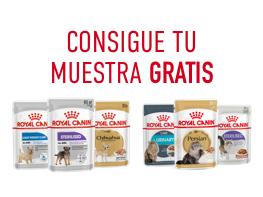 Muestra Gratis Alimento Húmedo Royal Canin