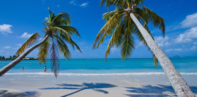 Punta Cana en Navidad Todo Incluido en Hotel 5* Iberostar Dominicana
