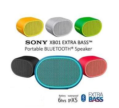 Altavoz Bluetooth Sony SRS-XB01