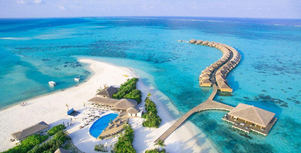 Viaje a MALDIVAS | Cocoon Maldives 5*