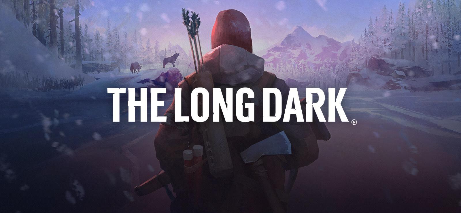 The Long Dark PC STEAM