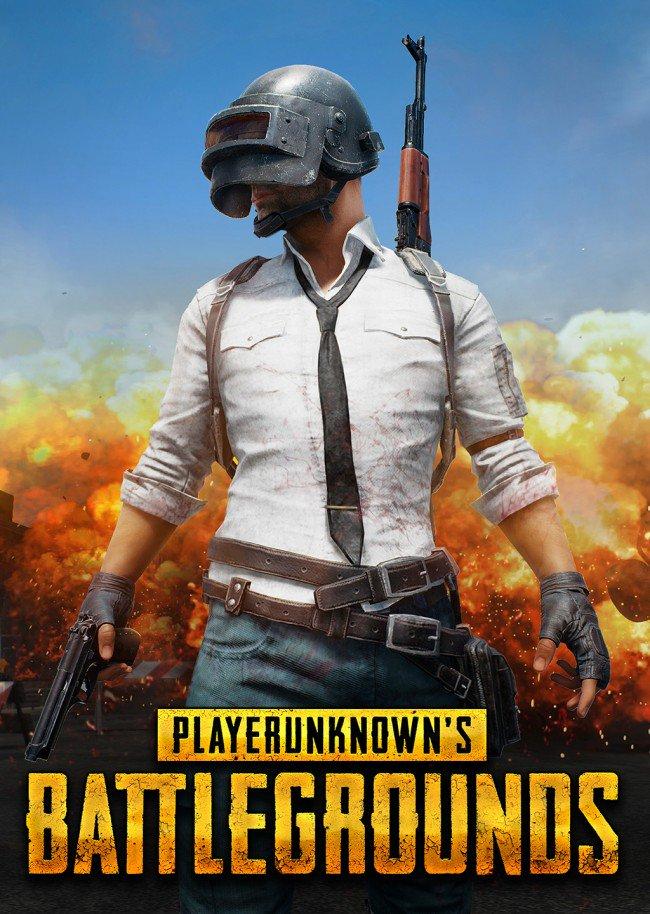 PlayerUnknowns Battlegrounds Steam solo 17.4€