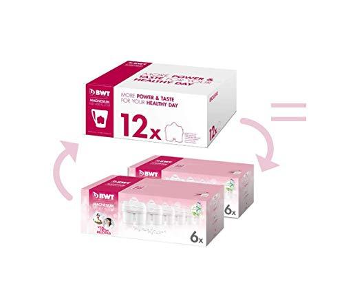 CHOLLAZO! 12 Filtros BWT con magnesio (Compatibles con Brita) por 3.32 € cada uno! Total 39,84 €
