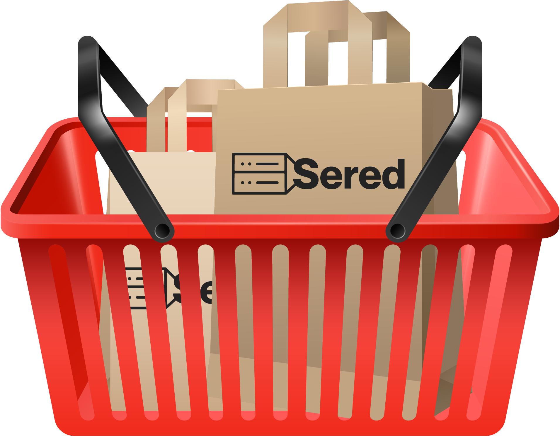 Sered Week Pack Llévate unHOSTING SSD BÁSICO POR UN AÑOcon un dominio.SHOP